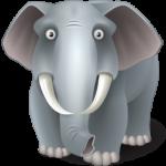 elephant_256