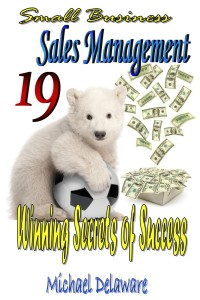 Small Business Sales Management: 19 Winning Secrets of Success